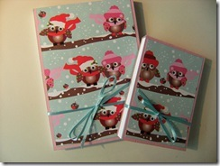 211010_Covered_Notebooks_Pink_Owls