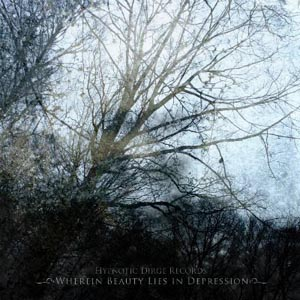 VA - Wherein Beauty Lies in Depression