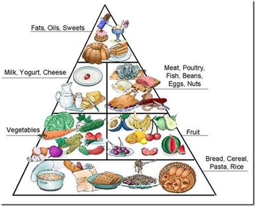 american eating habits essay