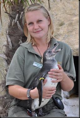 dsc0213.JPGTara & penguin chick
