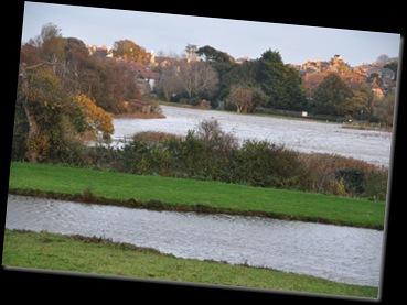 Flooding nature reserve Nov 2010