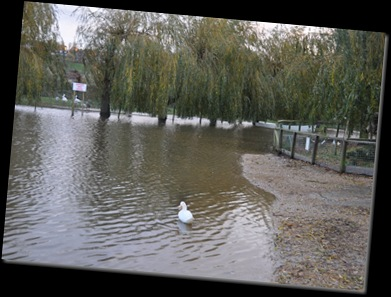 Flooding lower lake 8 Nov 10