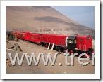 el tren transatacama
