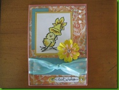 Trish's Cards January 2011 114