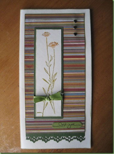 Trish's Cards January 2011 215