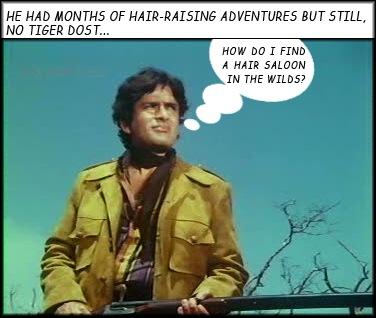 Shashi looking for a tiger.