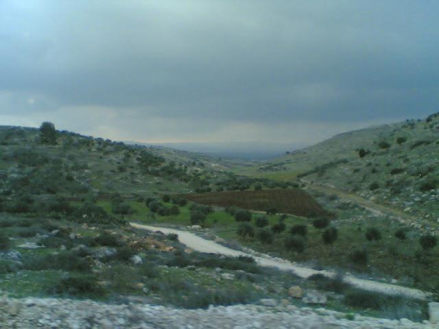 صور من وادي الحداد Sultan%3B%281433%29