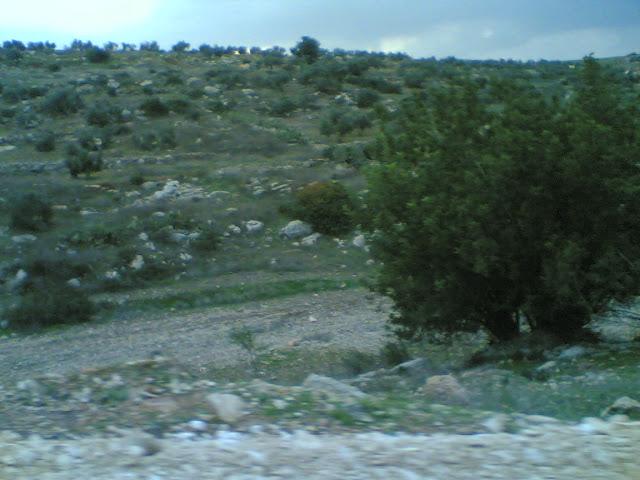 صور من وادي الحداد Sultan%3B%281434%29