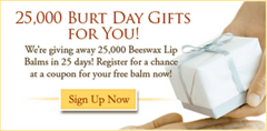 Burts Bee Lip Balm