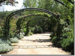 descanso_gardens_path
