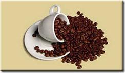 cafe_terra_brasil