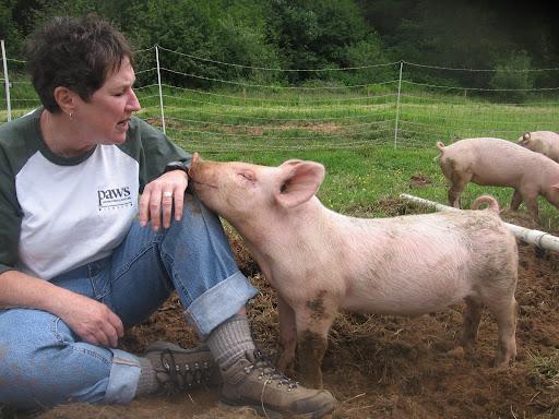 The Pig Whisperer