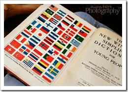 15 - Foreign Flag