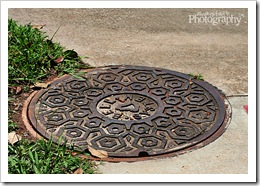 5 - Manhole cover