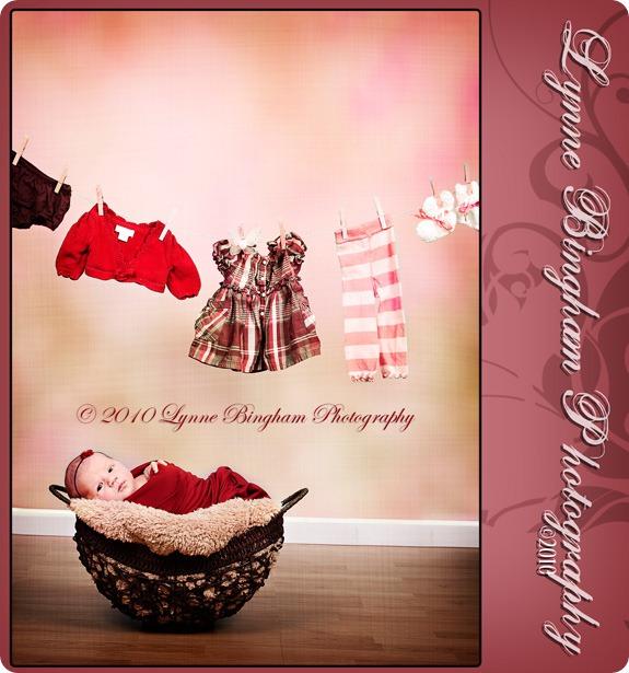 clotheslineweb
