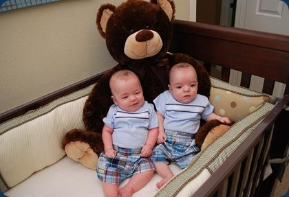5 Months - bear