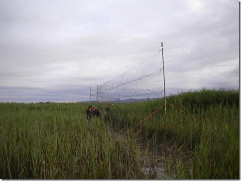 08-repasando redes