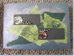 Paua Card1