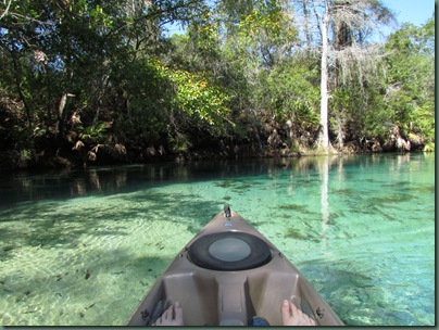 Paddling the Weeki Wachee River