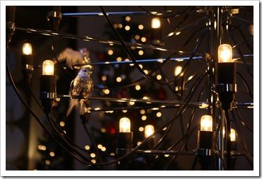 Studio December 2010 560