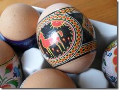 Eggs 2010 010
