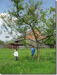 Spring 2010 060