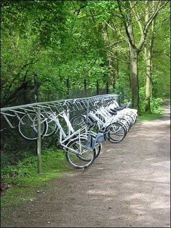 There are many white bicycles wich can be used freely by the visitors!