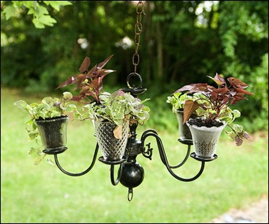chandelierplanter