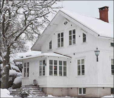 Vita villan i vinterskrud