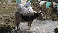 0432 Cooling on Arrival in Namche Bazar.jpg