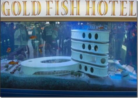 goldfish_hotel