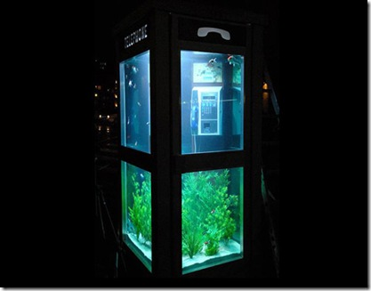 cabina de telefon - acvariu