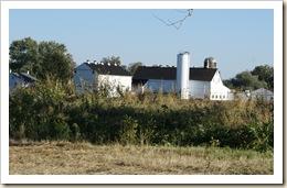 amish farm 09