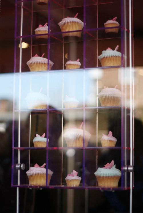 humming_bird_cupcakes
