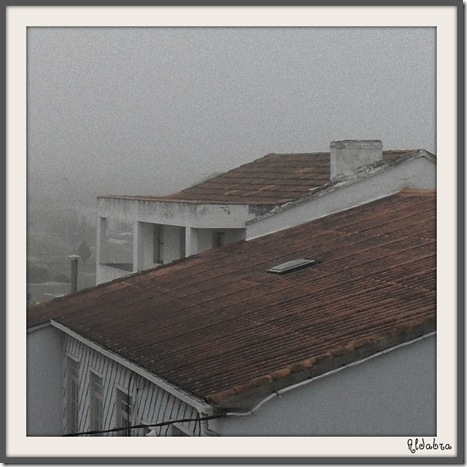 niebla-1