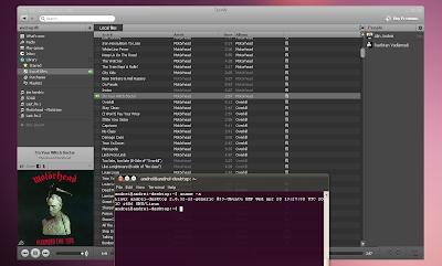 spotify 0.4.3 ubuntu under wine