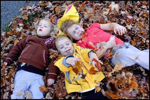 2009-11-03 Leaves 098