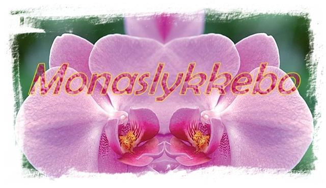 Monaslykkebo_header3