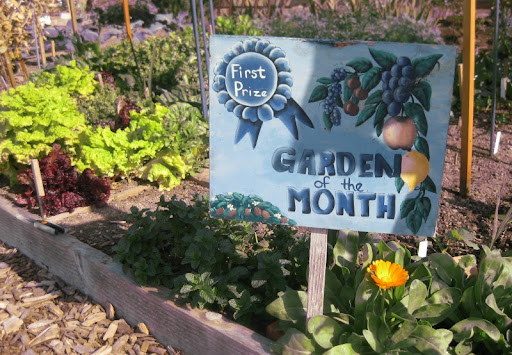 Pacific Beach Community Garden