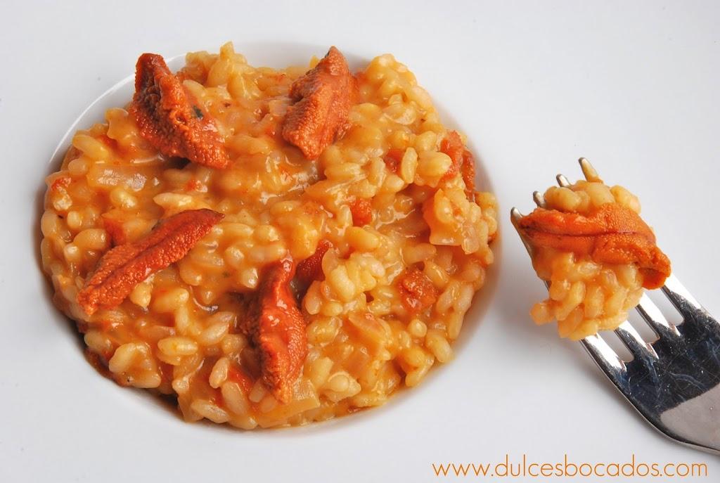 risotto de erizos de mar