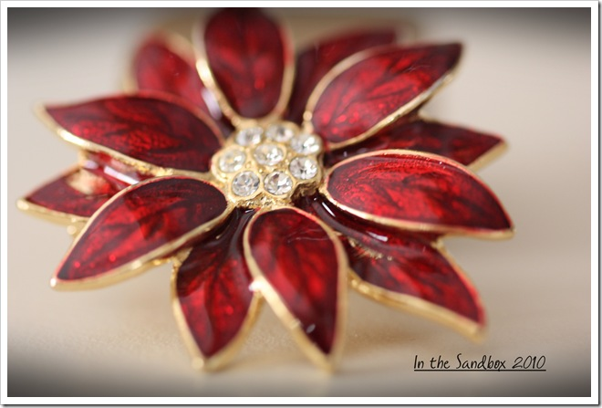 Poinsettia pin macro LR