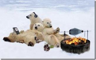 global-warming-hoax-300x182