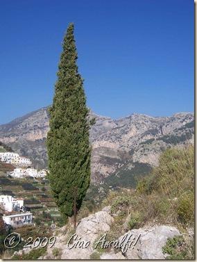 Ciao Amalfi Coast Blog View from Pogerola 2