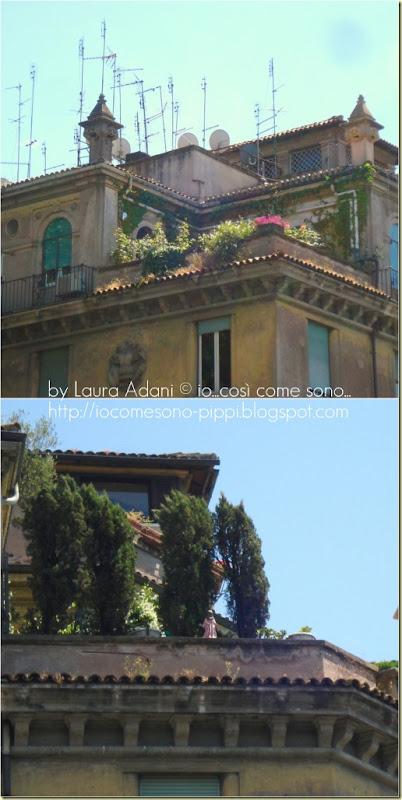 Collage balconi di trastevere
