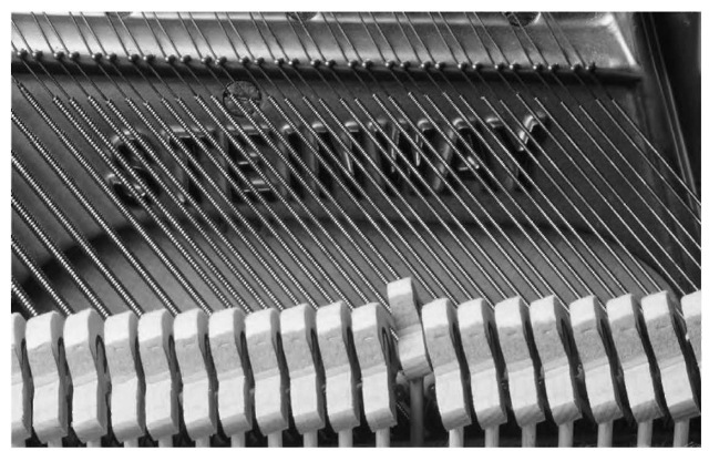 Piano strings generate sound as they are set into vibration by the hammers. The hammers, in turn, are attached to the black-and-white keys on the outside of the piano.