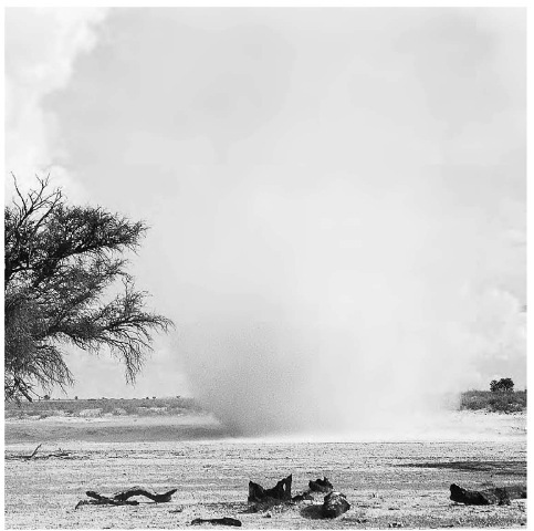 "A ""dust devil,"" or a small whirlwind, carries with it debris and sand."