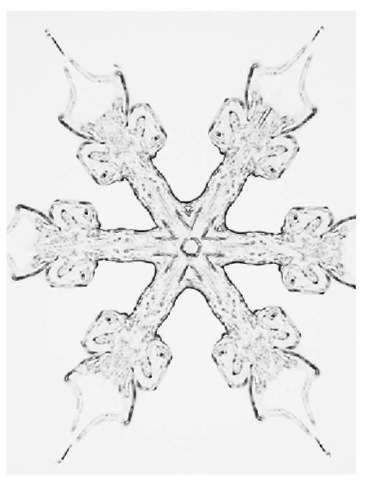 Micrograph of a snowflake. snowflakes are formed by the bonding of solid ice crystals inside a cloud.