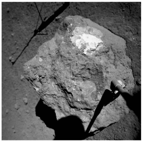 The clast of nearly pure olivine rock (dunite) sampled by the Apollo 17 crew at Station 2 at the base of the South Massif and dated as having crystallized 4.5 b.y. ago. The clast is enclosed in a blue-gray impact breccia and is a member of the Mg-suite of lunar rocks.This figure is available in full color at http://www.mrw. interscience.wiley.com/esst.