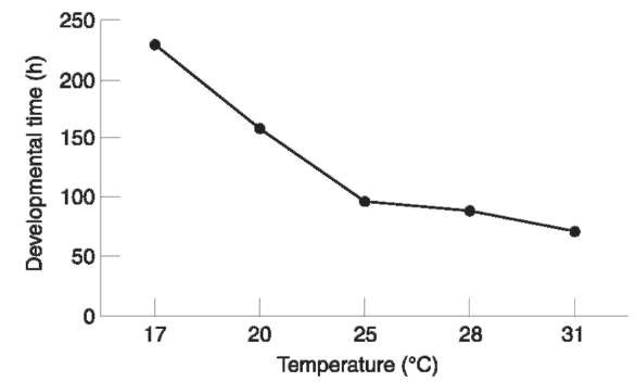Relationship between blowfly development and temperature.