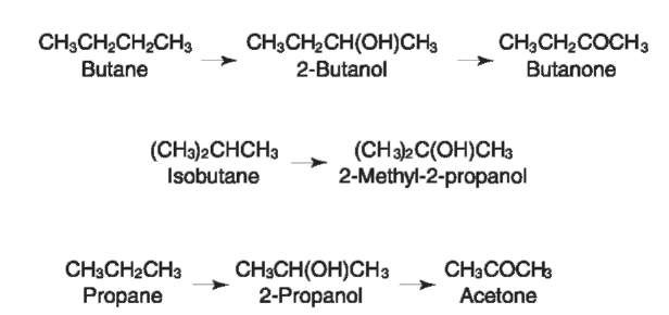 Summary of the metabolism of butane, isobutane and propane.